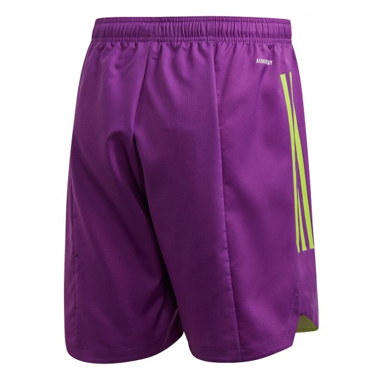 adidas CONDIVO 20 SHORT glory purple/team semi sol green